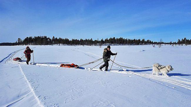 Excursión invernal en el Espacio Natural Protegido de Pulju