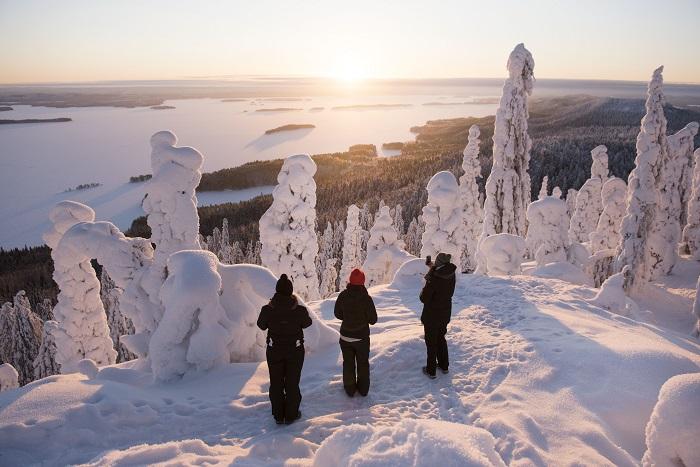 Buenas noticias para la temporada 2020 en Laponia
