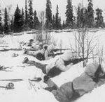 Tiradores finlandeses en la Guerra Fría (alhistory)
