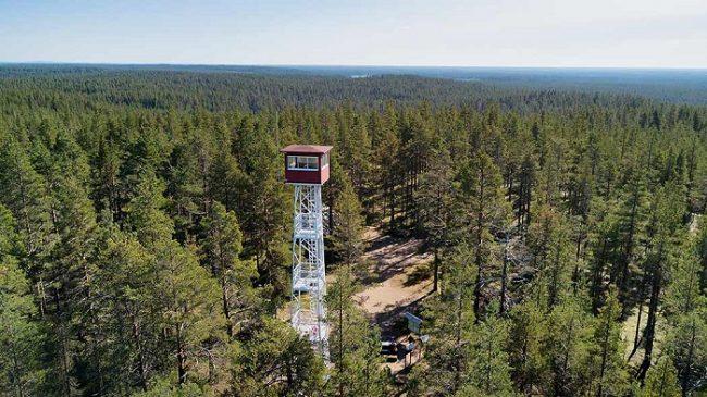Desde la torre de vigia de Pookinpolku, en el Parque Nacional de Rokua, las vistas son espectaculares