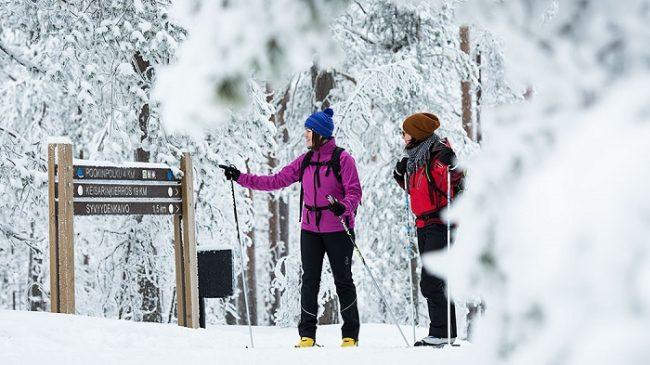 Durante el invierno en el Parque Nacional de Rokua también se puede practicar el esquí de fondo