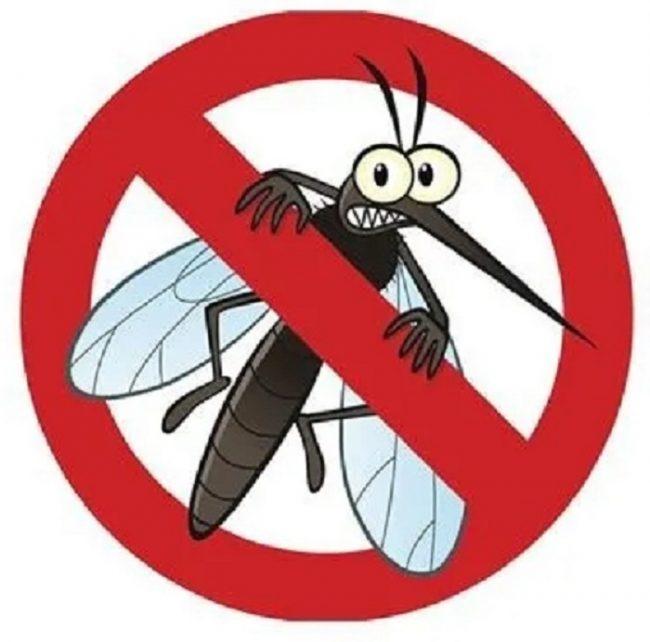 Los repelentes de mosquitos nos protegen de las picaduras