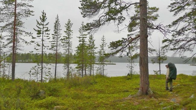 El camino de Piilola es el más popular del Área Natural de Vätsäri