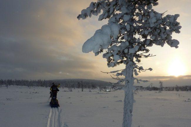 Durante una excursión invernal en el Área Natural de Hammastunturi