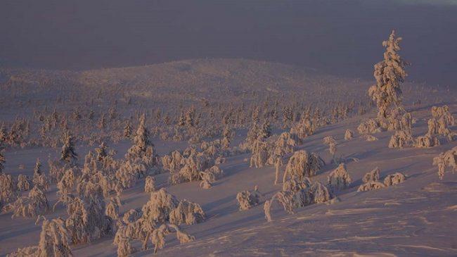 El Área Natural de Hammastunturi en invierno
