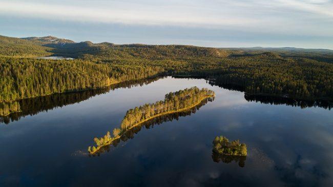 Bosque y agua, las dos esencias de la vida en Finlandia