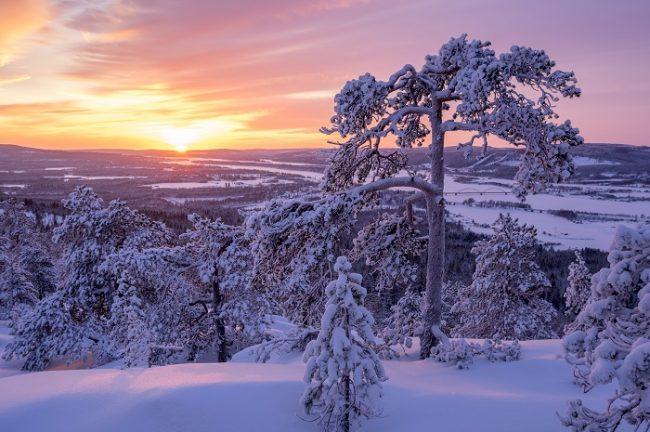Panorámica desde la colina de Aavasaksa en Laponia